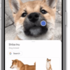 Google Brings Google Lens Visual Search to its iOS App